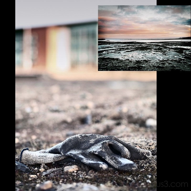 Berwick Coastline