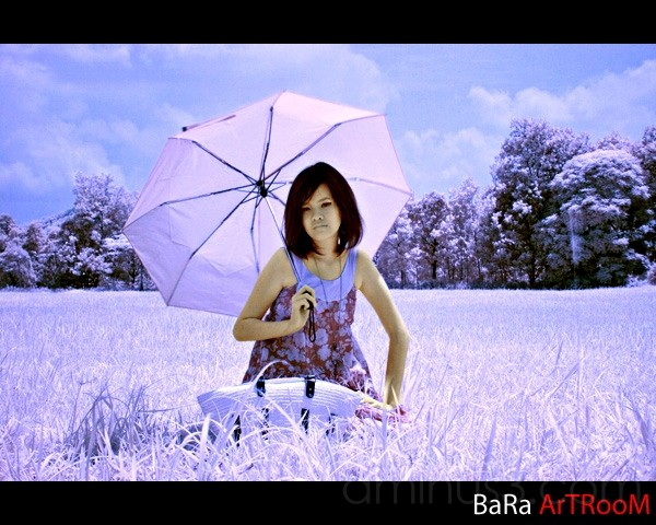 you can sit under my umbrella (infrared filter)
