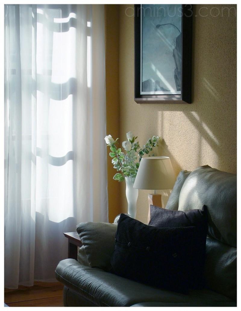 casa sillon luz flores