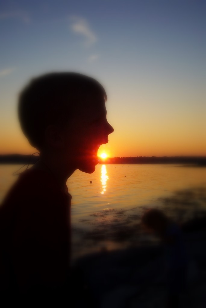 boy eating sun