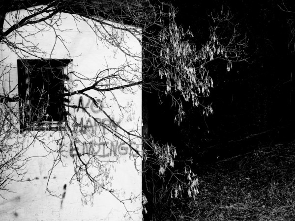 A shed on the path; high contrast B&W