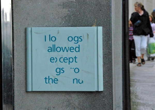 I lo ogs allowed...