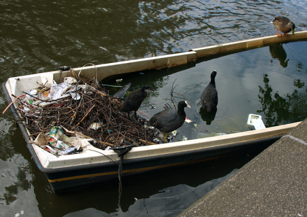 Distressed dinghy