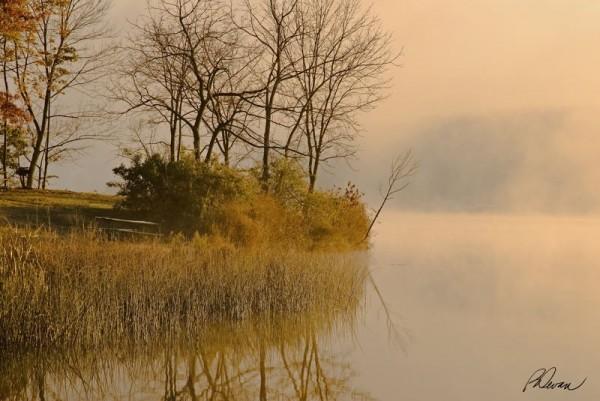 A foggy morning at Marsh Creek Lake, Uwchlan, PA