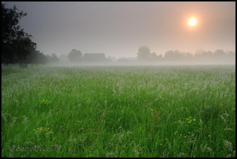 Morning sun burns through fog overlying a field