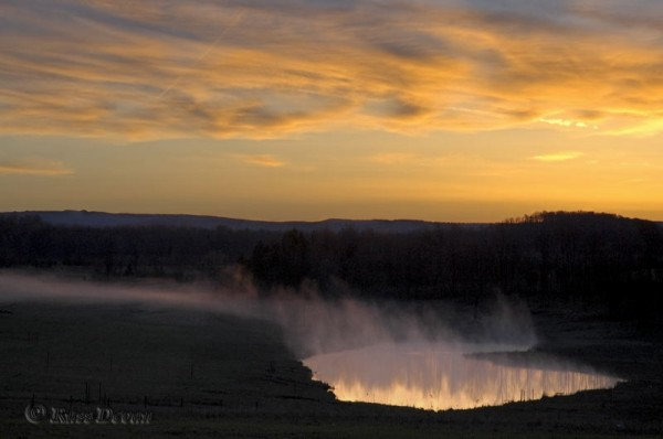 Valley fog over a farm pond at sunrise