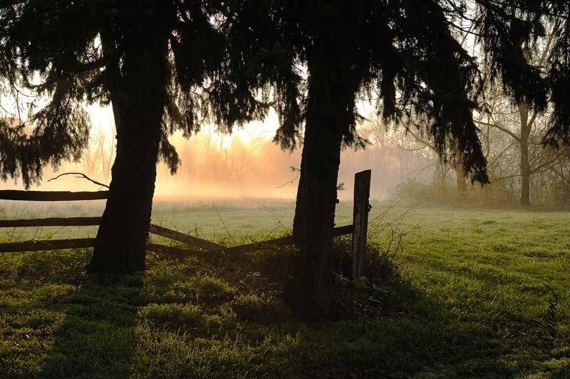 Pennwyck Farm