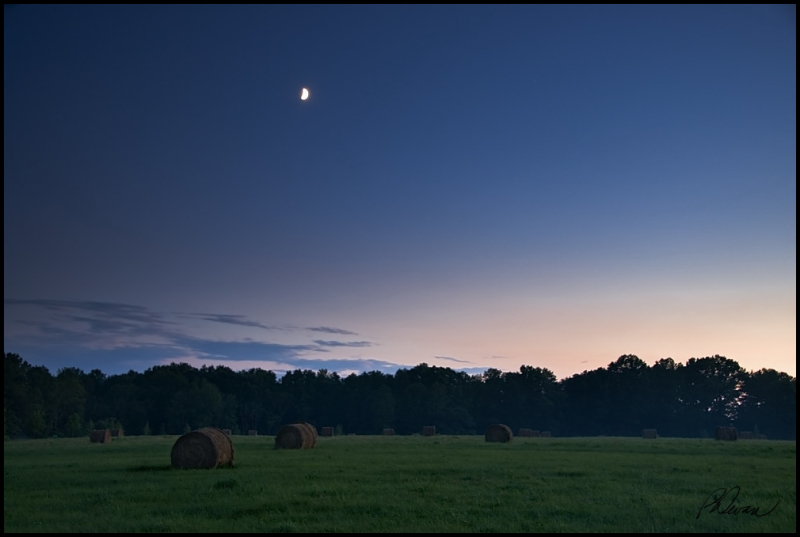 A gibbous moon rises over a field of hay bales
