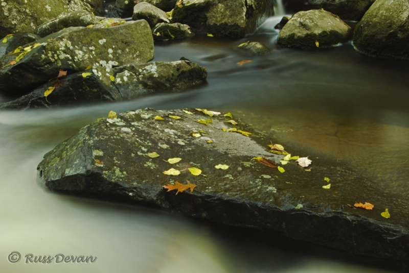 Autumn Leaves on Diabase Boulders, French Creek