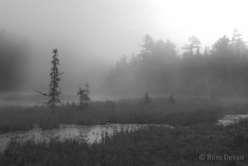 Morning Fog, West Branch, Ausable River