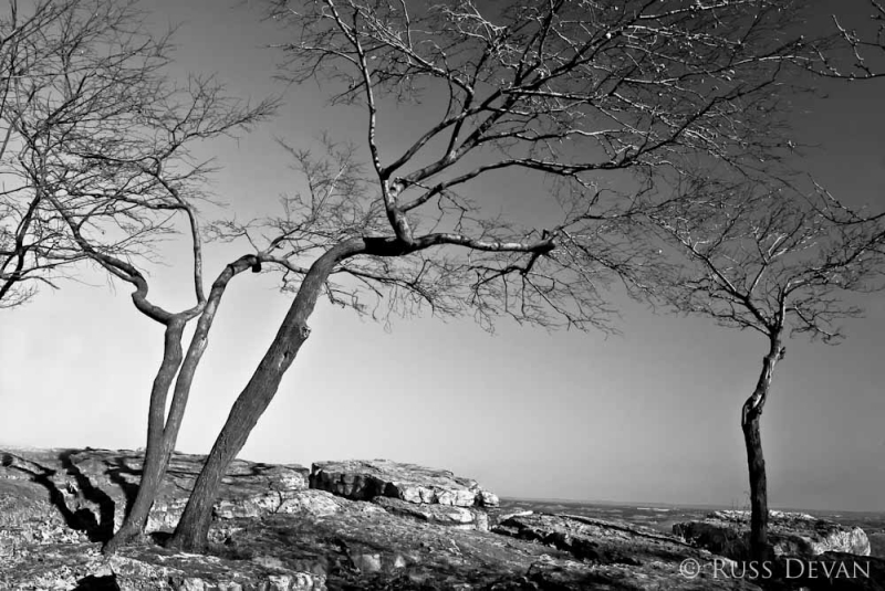 Bare Trees at Pulpit Rock, Appalachian Trail