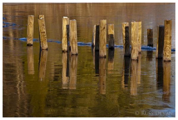 Wood Pilings III