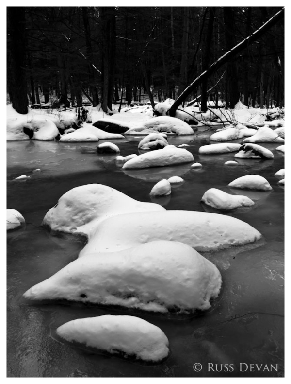 Snow-Covered Rocks in Evening Branch Creek