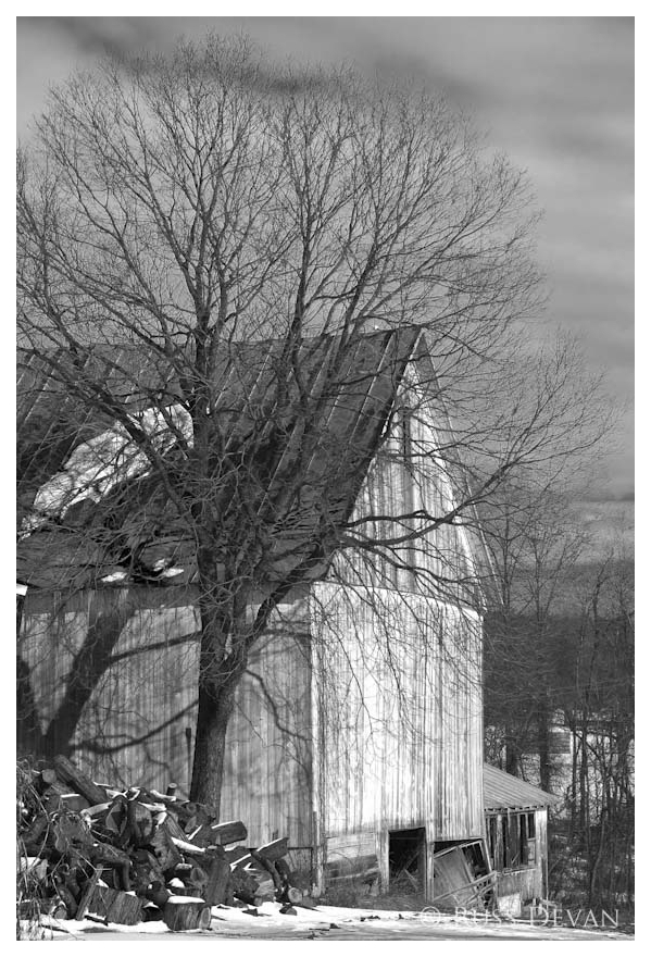 Bernville Barn I