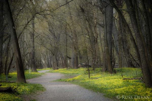 Vernal Trail