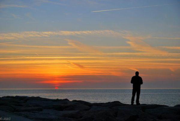 The Cotentin Peninsula 1
