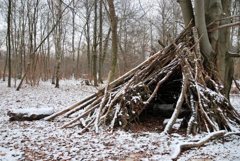La hutte