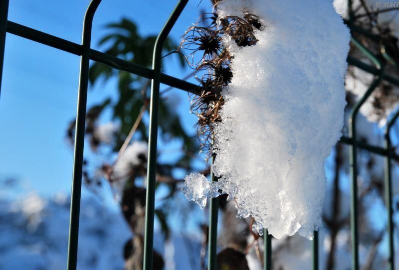 Retiens l'hiver