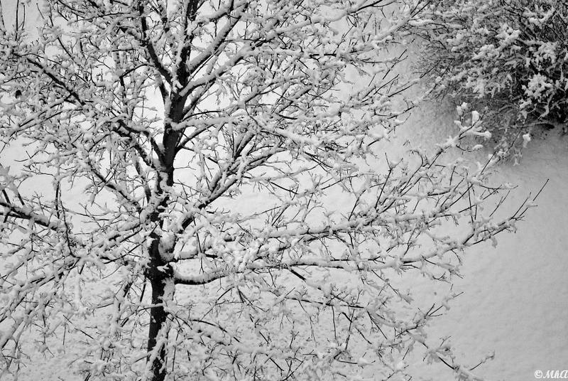 Jours de neige 4
