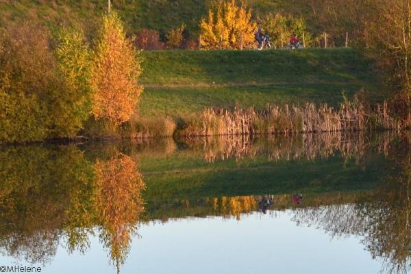 Le tour de l'étang