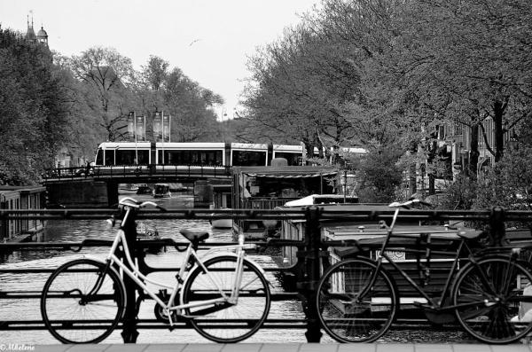 Les canaux d'Amsterdam - 1