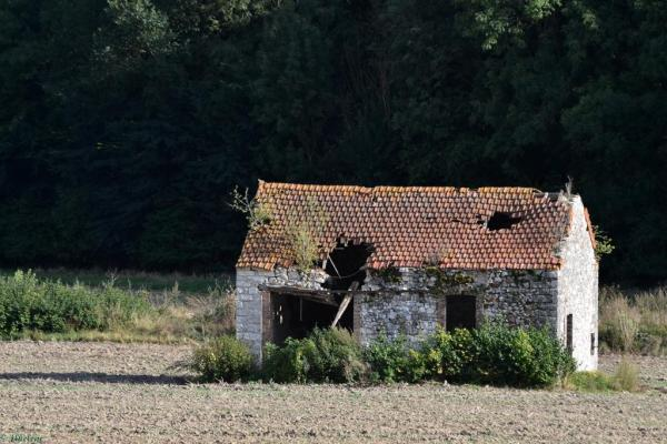 La maison des champs