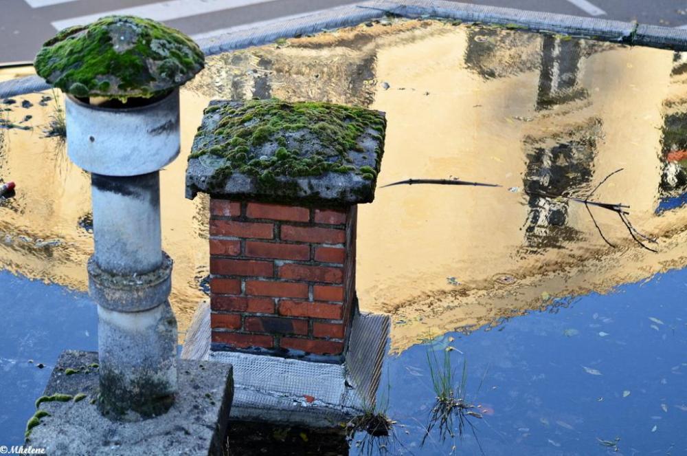 Paysages de l'eau pluviale