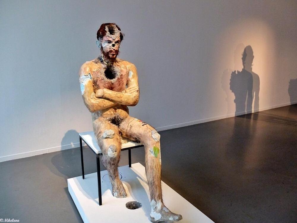 """""""Flux """" : exposition de David Altmedj"""