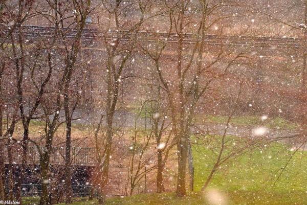 Il neige au soleil