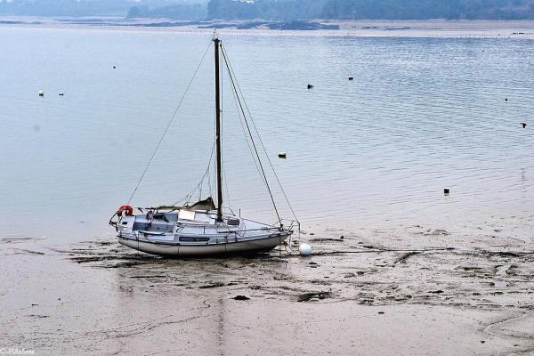 Attente de la marée