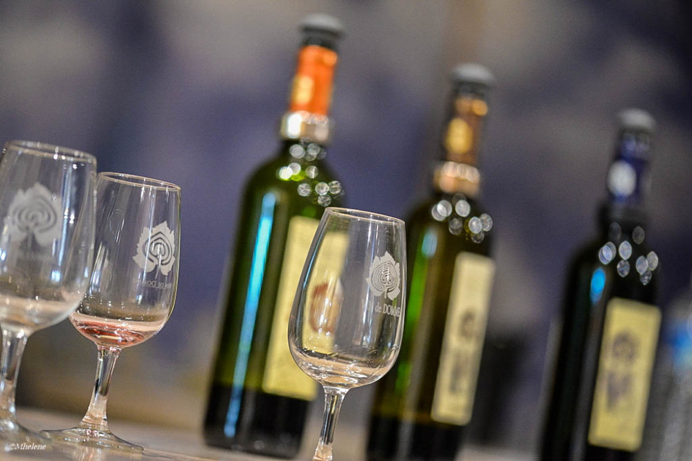 Le vin de Domme