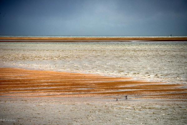Les bancs de sable