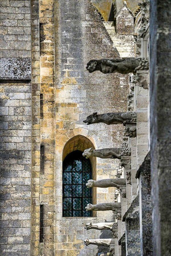 Les gargouilles de la cathédrale