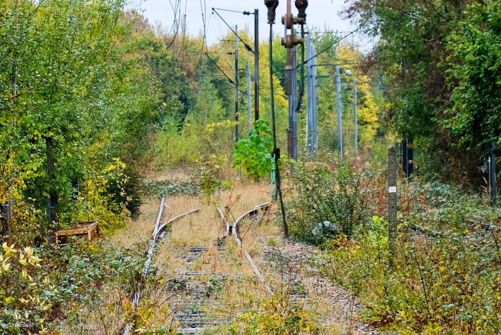 Les rails abandonnés