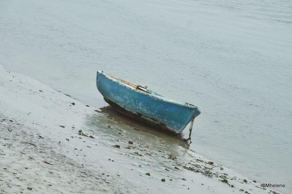 Bercé par la marée