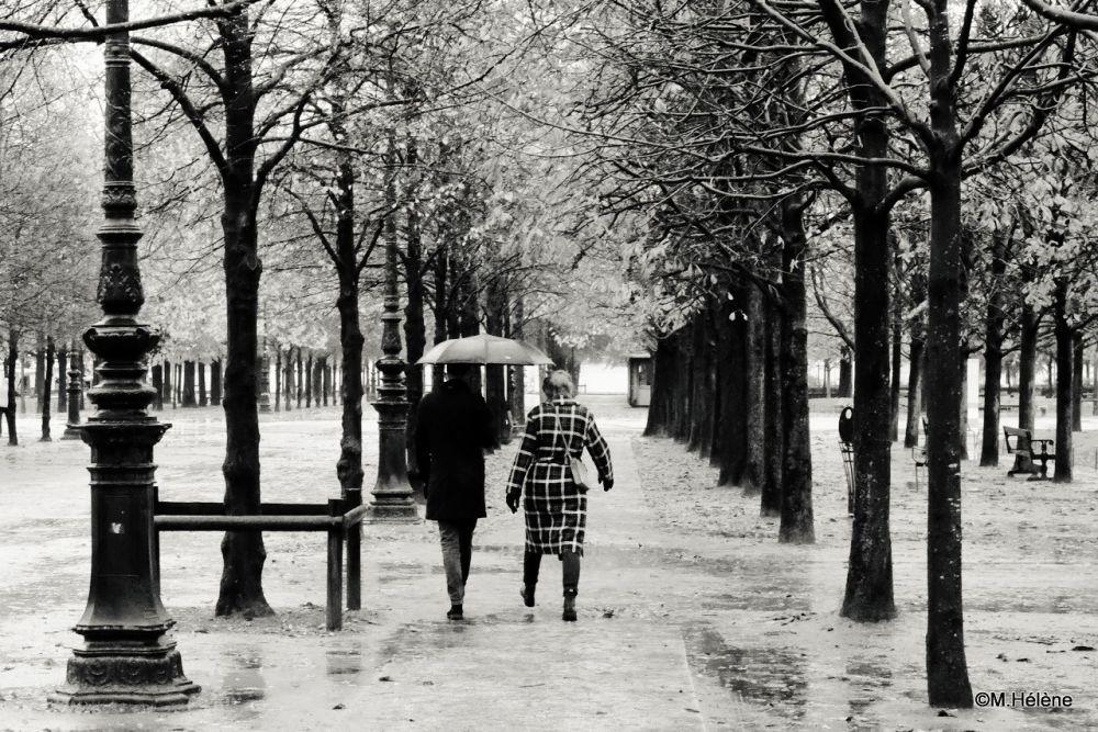 Jardin des Tuileries - 3