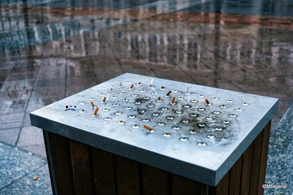 Les mégots sous la pluie