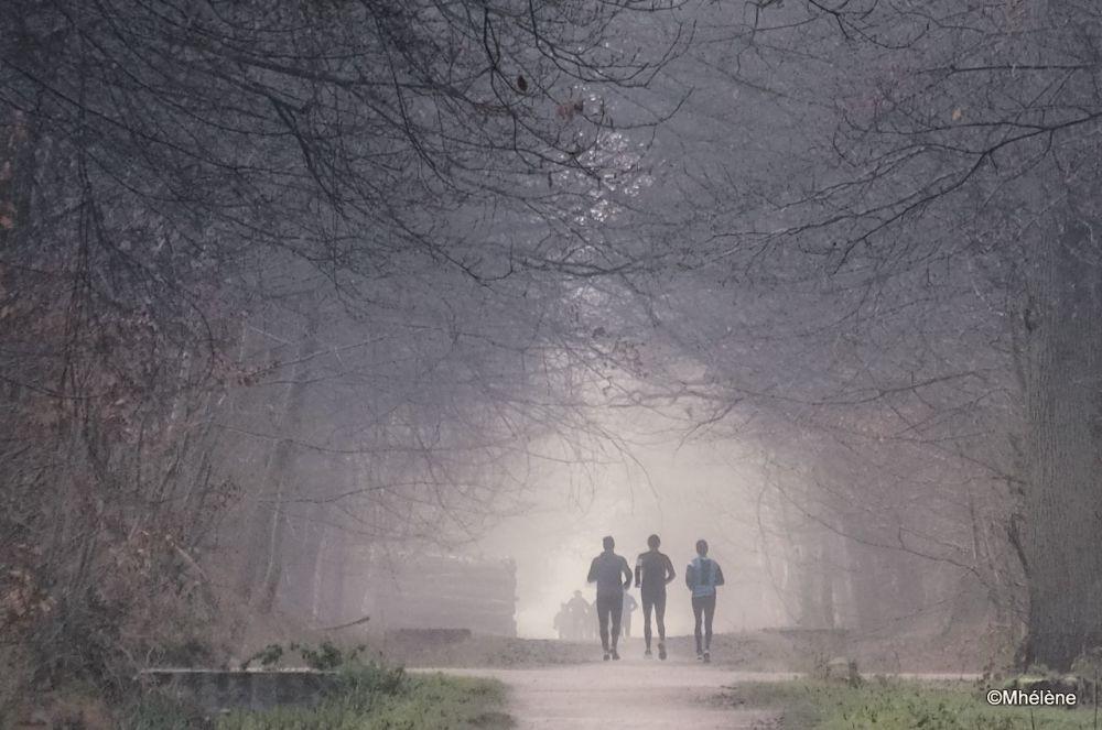 Jogging matinal