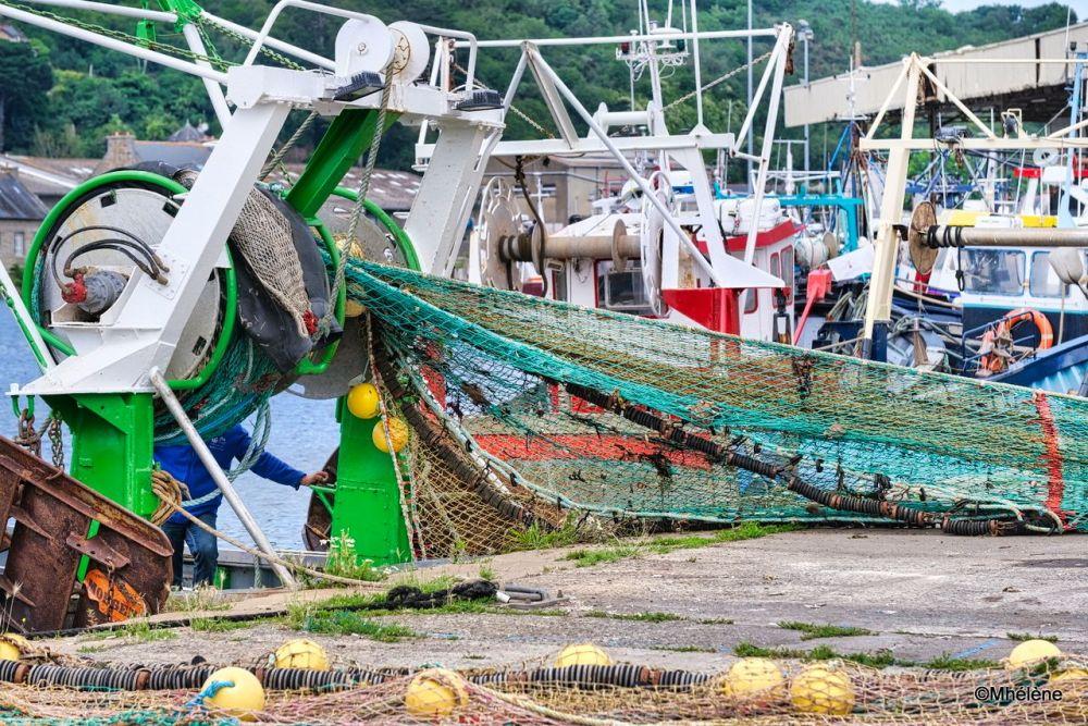 Au port de pêche -3