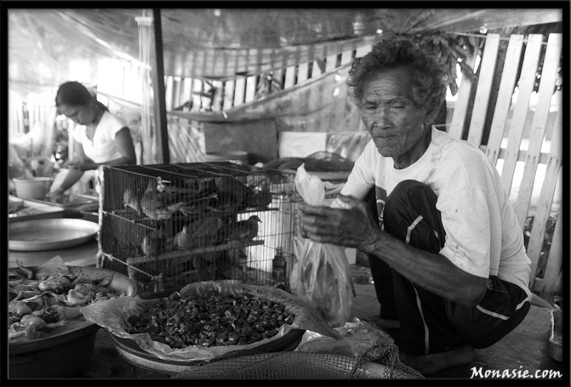 Frog Dealer in Klaeng Market (2) (Thailand)