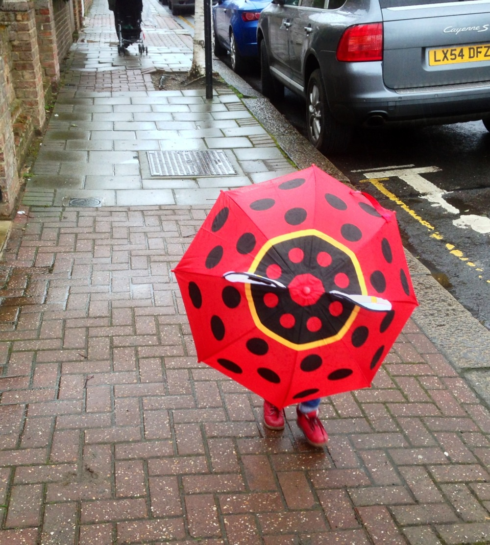 ladybird about to walk in to lamp post