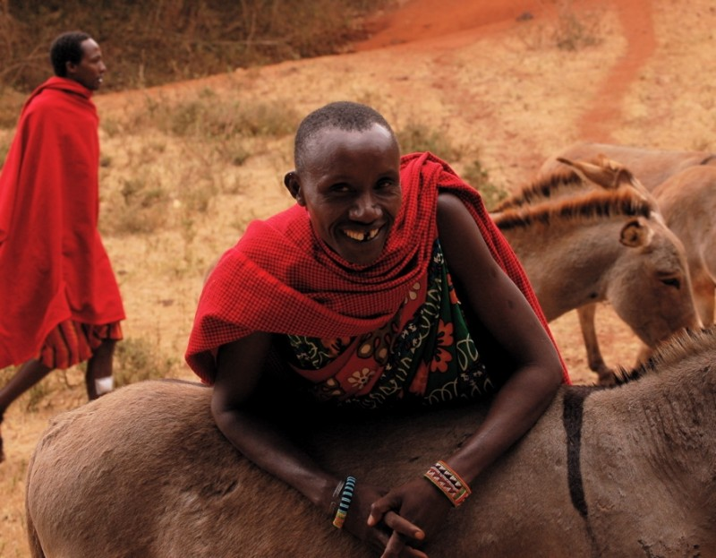 Maasai man with a pack donkey in Loita Hills