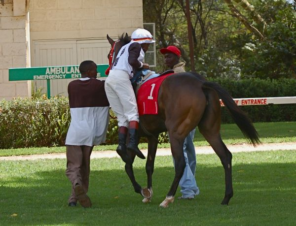 Jockey and racehorse, Ngong Racetrack, Nairobi