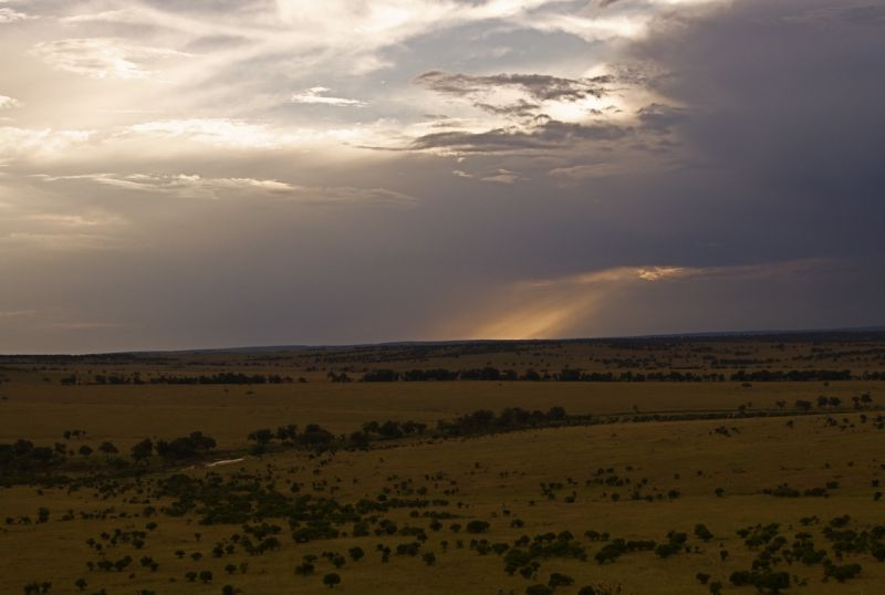 Sand River at dusk, Masai Mara, Kenya