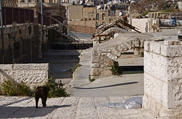 On top of the Jewish Quarter, Old Jerusalem