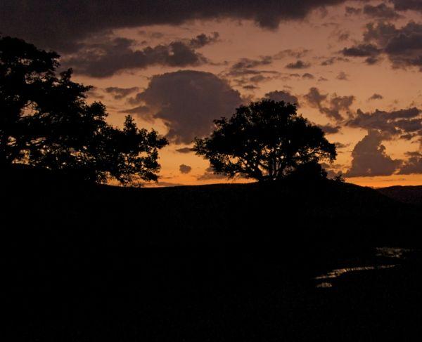Sand River Sunset, Masai Mara