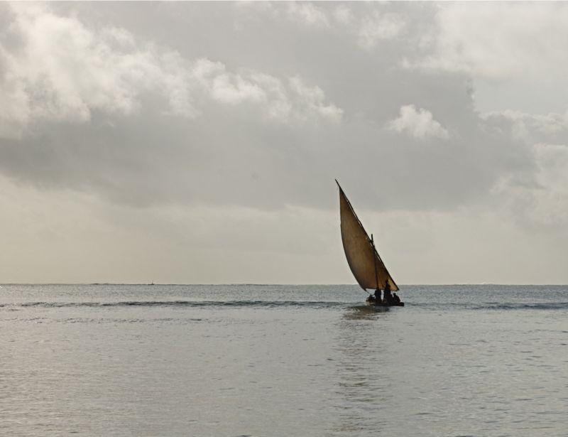 Dhow under sail, Malindi, Kenya