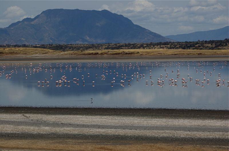 Pans at Magadi Lake, Kenya