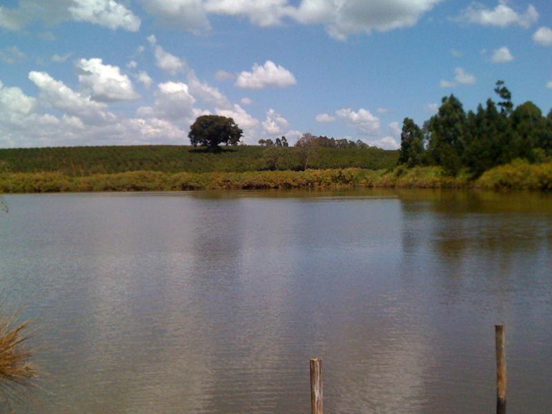 Reservoir on a coffee plantation outside Nairobi