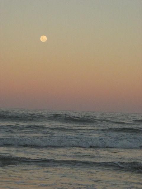 Marcus Beach, Sunshine Coast, Australia